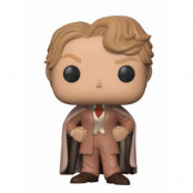 POP! Vinyl Harry Potter - Gilderoy Lockhart