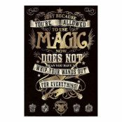 Harry Potter, Maxi Poster - Magic