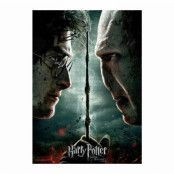 Harry Potter - Harry vs. Voldemort Jiggsaw Puzzle